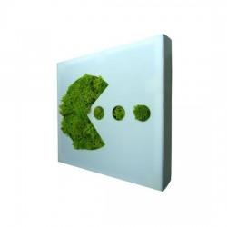 Tableau picto végétal Pacman Flowerbox