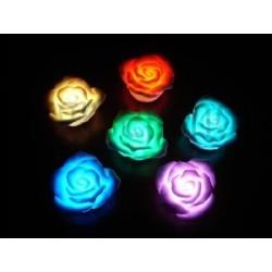 Roses lumineuses flottantes
